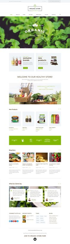Organic store responsive WordPress Theme is a colorful design perfectly suitable for #agricultural business, agrotourism, healthy food blog, organic food shop, #organic farm, bakery – anything you want! #websi