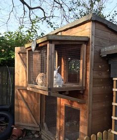 Great idea here for a safe look out for bunnies. www.best4bunny.com