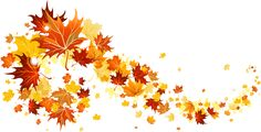 Fall Leaves Transparent Picture