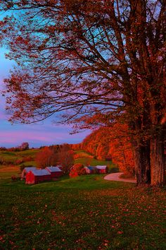 Sunrise at Jenne Farm, Woodstock, Vermont  I could blow this up large an place in a photo frame.