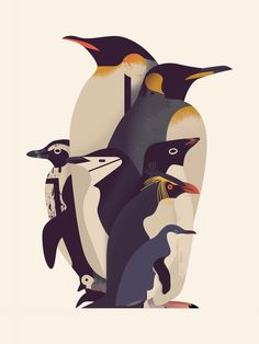 Image of Parade of Penguins  Owen Davey