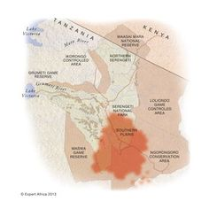Serengeti wildebeest migration explained with moving map