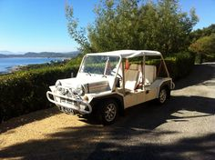 MINI MOKE 25th Anniversary 1989 LHD | eBay