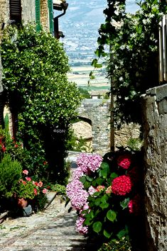 Umbrian hill town Montefalco, Italy