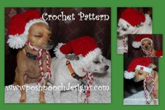 Instant Download Crochet Pattern  Red Boucle' by poshpoochdesigns, $3.99