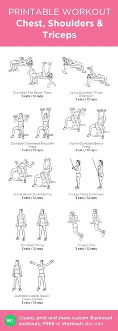 Gym & Entraînement : Chest, Shoulders Triceps: my visual workout created at WorkoutLabs.com • Click... https://flashmode.be/gym-entrainement-chest-shoulders-triceps-my-visual-workout-created-at-workoutlabs-com-%e2%80%a2-click/ #Fitness