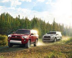 2016 Toyota Sequoia @ Milton Toyota in Greater Toronto Area Toyota Sequioa, Toyota Dealership, Scion, Ontario, Toronto, London, Adventure, Adventure Movies, Adventure Books