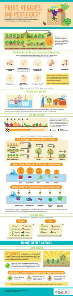 Infographic on the health risks of pesticides on our produce... Eat organic!