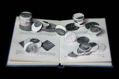 Book Arts Observers book of Coins. Nicola Jedrzejczak © Book Art. Altered Book. Book artist. Coins. Money. Change. GBP. Observer's book. Book Sculpture. www.nicolajedrzejczak.co.uk