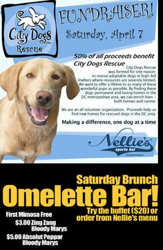 Saturday  After yoga, join City Dogs Rescue for an adoption brunch and fundraiser at Nellie's Sports Bar today.  For $20, you get a mimosa and a buffet brunch! For just a little more, you can adopt a dog! @bitches