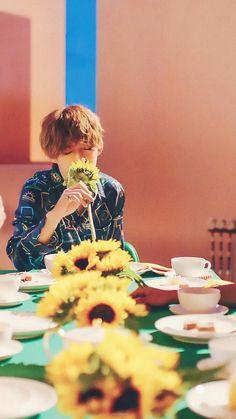 Woozi, Jeonghan, Wonwoo, Seungkwan, Kpop Wallpapers, Seventeen Wallpapers, Vernon Seventeen, Seventeen Debut, Daegu