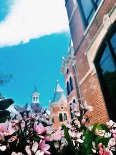 Spring blossoms at Baylor University
