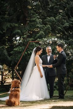 17 Ideas backyard wedding seating bride groom for 2019 Dog Wedding, Wedding Blog, Wedding Planner, Dream Wedding, Wedding Ideas, Spring Wedding, Wedding Reception Flowers, Wedding Ceremony Backdrop, Wedding Dresses