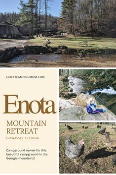 Enota Mountain Retreat Campground Review New York State Parks, Travel Checklist, Natural Homes, Campsite, Family Travel, Travel Goals, Travel Tips, Hiking, Cabin