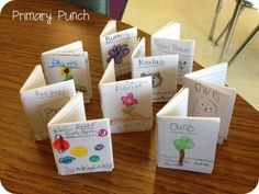 Informative Mini-Books out of index cards.. cute! Cute idea for a social studies or science nonfiction report.