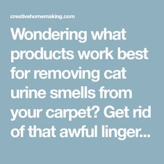 Wondering what products work best for removing cat urine smells from your carpet? Get rid of that awful lingering smell with these tips from our readers