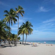 The City of Fort Lauderdale boasts more than seven miles of sparkling beaches that offer residents and visitors premier opportunities for recreation