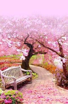 Diamond Painting Pink Blossom Trees – Miracles from Nature Beautiful World, Beautiful Gardens, Beautiful Flowers, Beautiful Places, Colorful Flowers, Purple Flowers, Beautiful Nature Wallpaper, Beautiful Landscapes, Pink Blossom Tree