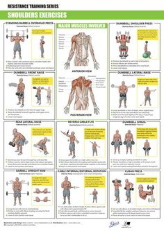 SHOULDERS Exercises