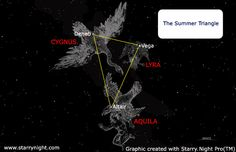 "The so-called Summer Triangle - actually visible for most of the year - is an asterism, a pattern of stars that isn't a constellation. It's formed by three bright stars: Deneb in Cygnus, Altair in Aquila and Vega in Lyra. ©Mona Evans, ""Heavenly Aviaries – Bird Constellations"" http://www.bellaonline.com/articles/art33297.asp"