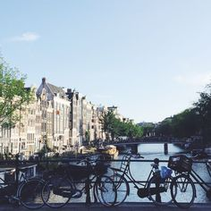 Back to Amsterdam, en OuiBus ! – Tippy