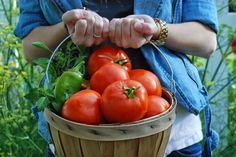 Basta So Good: Quatro das minhas receitas de tomate favoritos