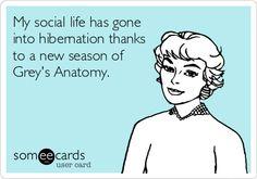 My social life has gone into hibernation thanks to a new season of Grey's Anatomy.