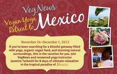 Veg News Vegan Yoga Retreat in Mexico Nov 24- Dec 1, 2012