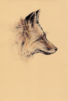 fox, art, and drawing afbeelding Fox Drawing, Painting & Drawing, Animal Drawings, Art Drawings, Fox Sketch, Fuchs Tattoo, Fox Images, Fox Art, Traditional Tattoo