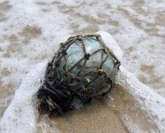 Green Beach, Out To Sea, Sea Glass, Sea Shells, Fishing, Lost, Collections, Seashells, Shells