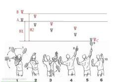 Badminton Court Dimension Diagrams, Size, Measurements