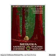 Sequoia California National Park Travel Poster