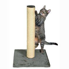 Tall Scratch Posts Cats