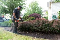 Mukilteo Landscape Project - Check out Washington Lawns crew pruning, mulching, and shaping some beautiful pink roses into a backyard paradise. Trimming Hedges, Beautiful Pink Roses, Yard Waste, Backyard Paradise, Garden Landscaping, Outdoor Power Equipment, Eco Friendly, Lawns, Landscape