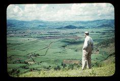 1950s Puerto Rico: Countryside