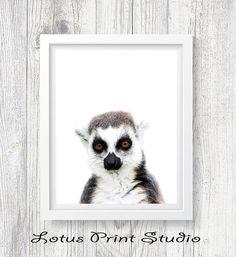 Lemur Print Madagascar Animal Wall Art Digital Download