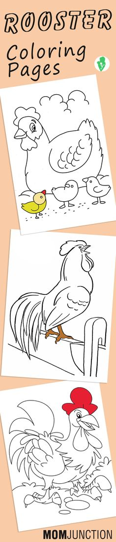 Top 10 Rooster Coloring Pages Your Toddler Will Love To Color
