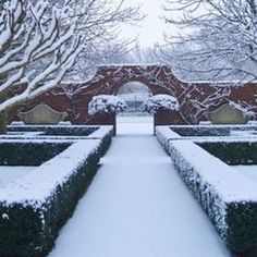 And into a world of Beauty. The Heavenly world of the Aesthete. The Three Graces: Elegance, Beauty, Flair. Gentility, Serenity and the Indefinable ability to Delight. Winter Garden, Serenity, Paths, Sidewalk, Heaven, Snow, Pure Products, World, Outdoor