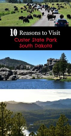 Let us convince you to visit Custer State Park: remarkable beauty, thrilling animal encounters, lake fun, cool lodging, and incredible scenic drives. South Dakota Vacation, South Dakota Travel, North Dakota, Bad Lands South Dakota, Sturgis South Dakota, Deadwood South Dakota, Rapid City South Dakota, North America, Vacation Trips