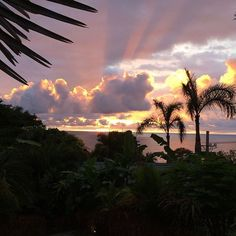 One of the most stunning sunset pics we've seen from @hotelcasachameleon.... 📷via @aswpanda