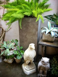 Refreshed our #Patio for #Spring!  #decor #design #love #garden