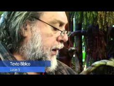 Novo Testamento de Carreirinha: Lucas 5. - YouTube