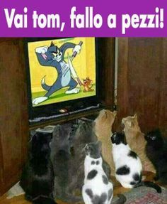 Il tifo ! :)