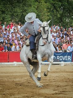Gonzalo Corrales con Charran #domavaquera @edupenafoto #sevilla #huelva #mairenadelalcor #visodelalcor #elrocio #fei #caballos #lospalaciosyvillafranca #carmona #jerez #villanuevadelrioyminas #cantillana #umbrete #alcaladeguadaira #horses #sambartolomedelatorre #puebladeguzman #andalucia #villanuevadelrioyminas #jerez #cordoba #jerez #elrocio #manzanilla #villalbadelalcor #hinojos #lapalmadelcondado @edupenafoto #lepe