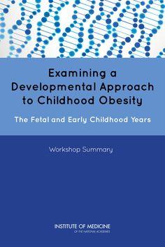 obesity summary essay