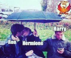 Casas de Hogwarts - Memes 4 - Wattpad