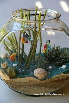 Fishbowl terrariums with succulents