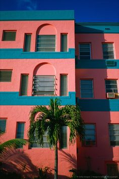 Colour blocks and palms More