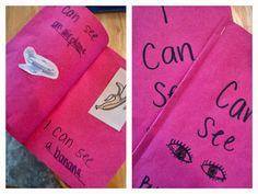 Sense of sight book.