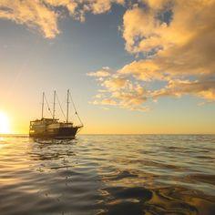 7745 Milford Sound Mariner Overnight Cruises